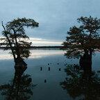 Abendstimmung am Reelfoot Lake, USA