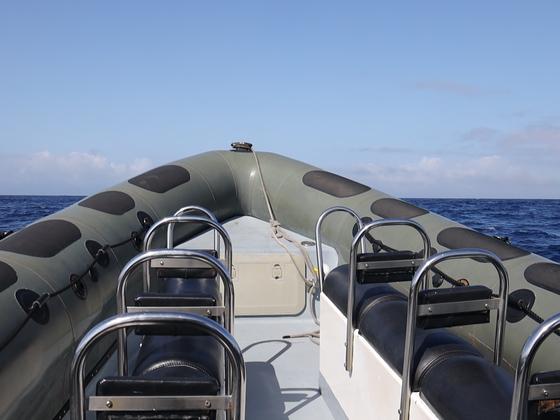 Bootsfahrt vor Pico