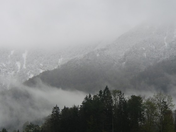 Schnee am Hausberg