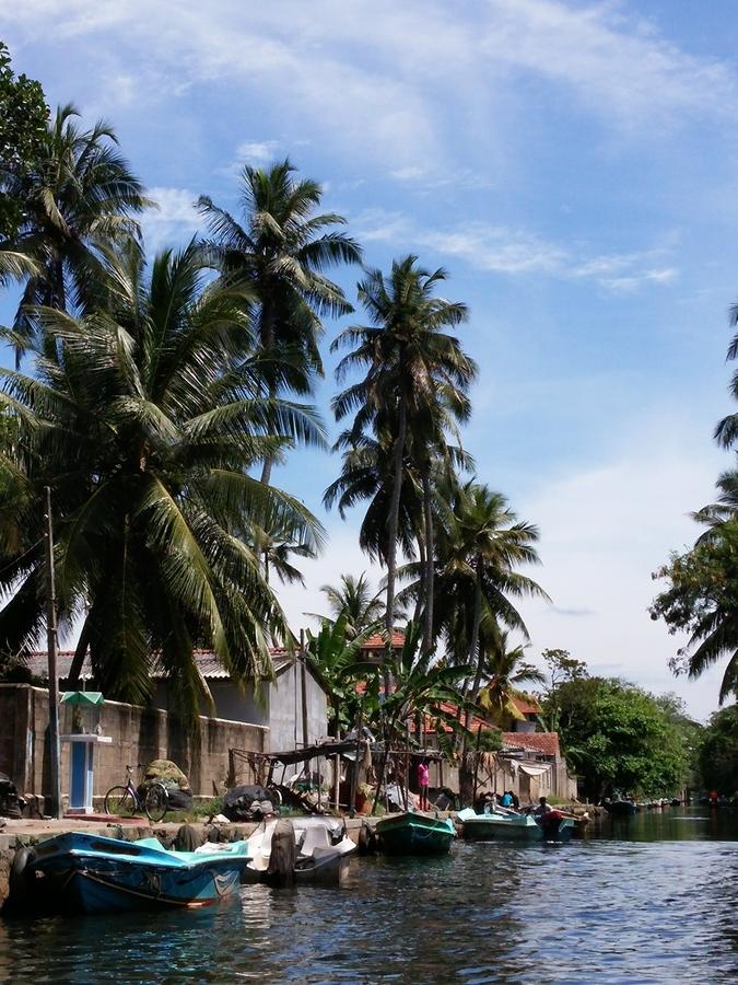 Kanaltour Negombo / Sri Lanka