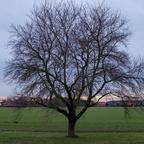 Abendstimmung im Winter im Landkreis Schaumburg