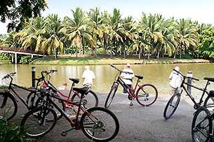 Colours Of Bangkok Bike Tour